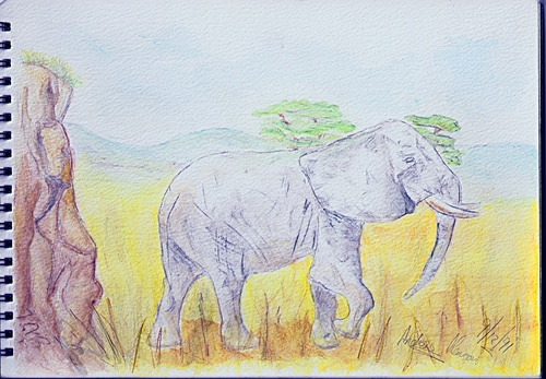 An elephant I drew when I was thirteen